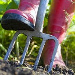 Soil Testing for Lawns and Gardens