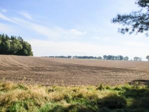 plain-field-1336684-1920x1440