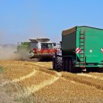 harvest-1513170